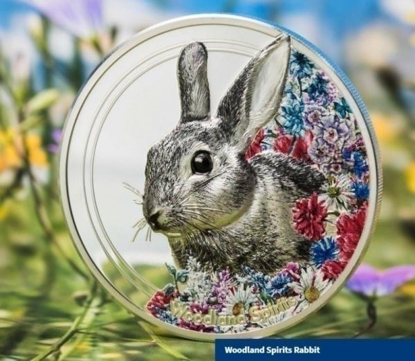 Фото Монета с зайцем от C